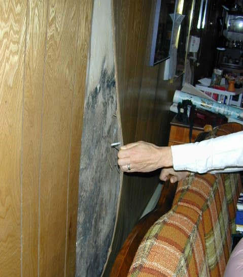 Mold Behind Paneling